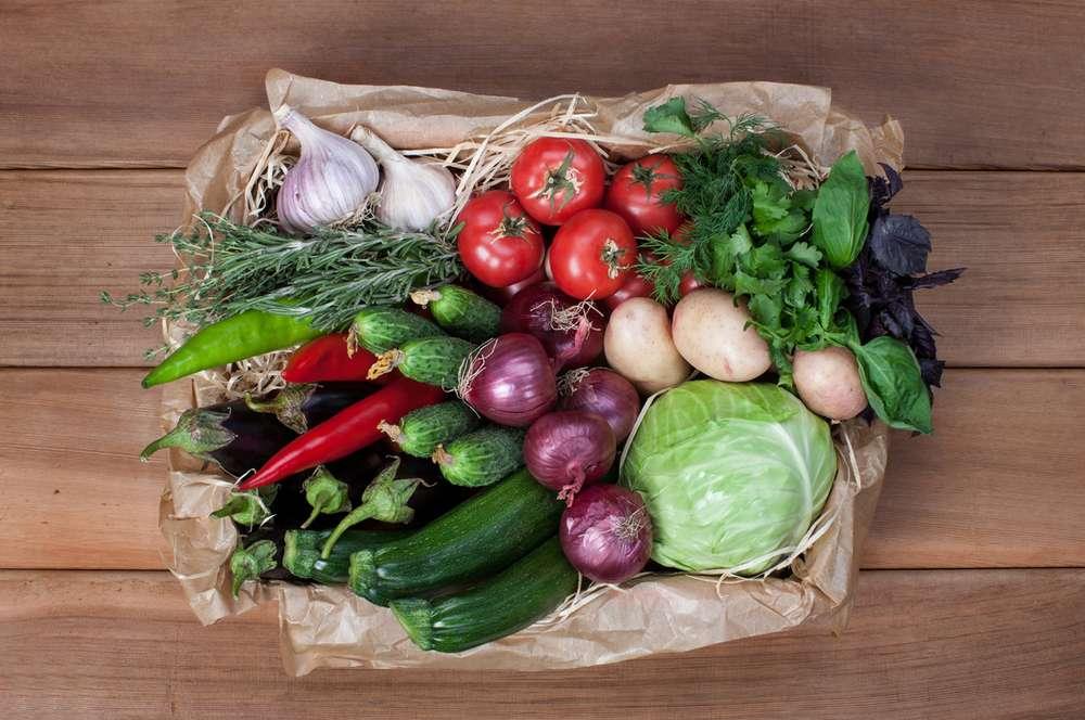 Ласточка Овощное рагу